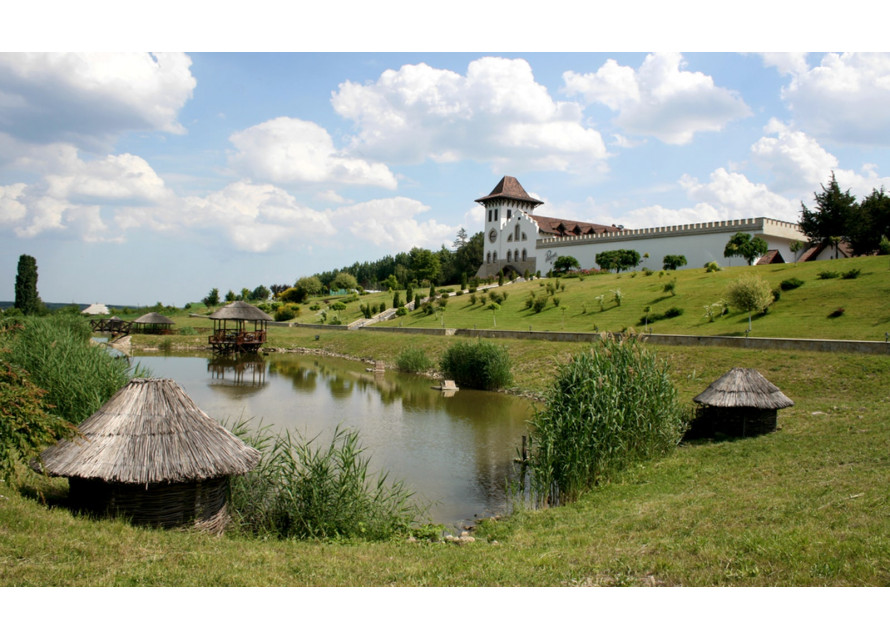 Щефан Вода, Молдова